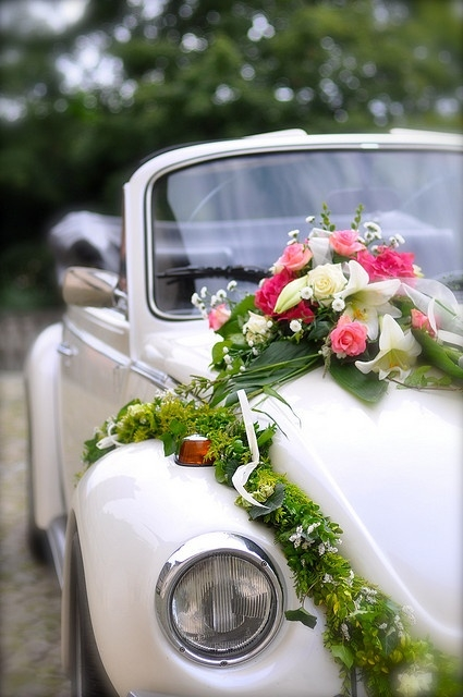 Adelaide Car Hire Wedding